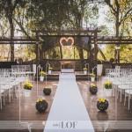 Wedding R&P-3-3